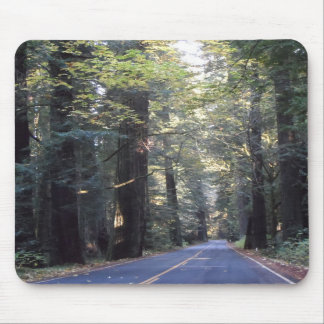Avenue of the Giants- Humboldt Redwoods State Park Mouse Pad