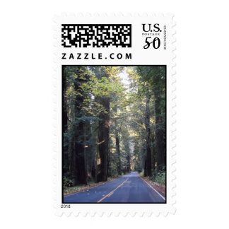 Avenue of the Giants- Humboldt Redwoods State Park Postage