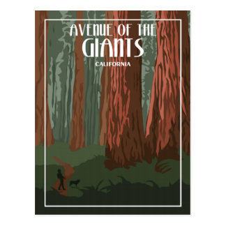 Avenue Of The Giants - Vintage Travel Postcard
