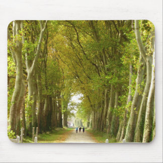 Avenue of Trees Mouse Mat