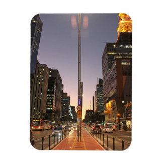 Avenue Paulista - São Paulo Magnet