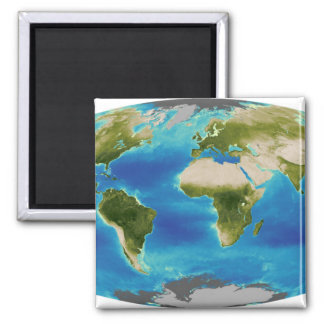Average plant growth of the Earth 2 Inch Square Magnet