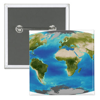 Average plant growth of the Earth Button