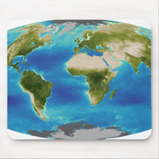 Average plant growth of the Earth Mouse Pad