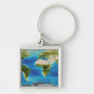 Average plant growth of the Earth Silver-Colored Square Keychain