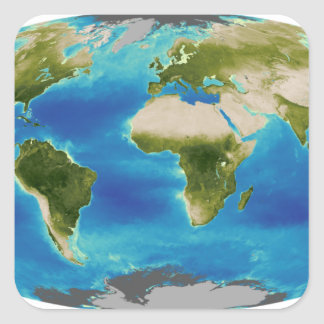 Average plant growth of the Earth Square Sticker