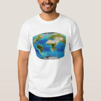 Average plant growth of the Earth Tee Shirt