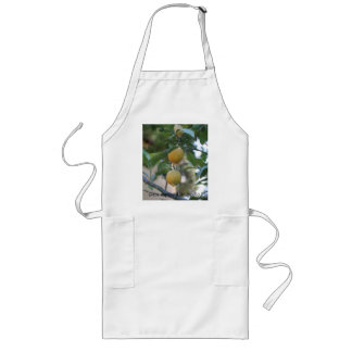 avere sapore il limoncello! long apron