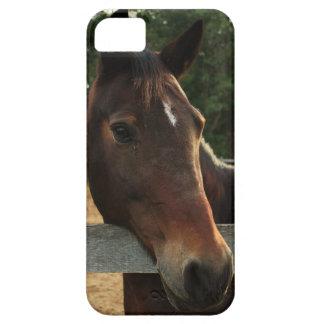 Avery iPhone 5 Case