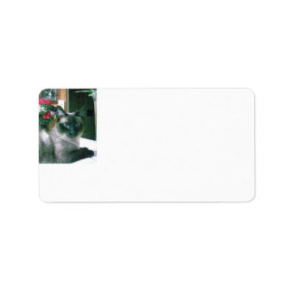 Avery Print-to-the-Edge Address Labels
