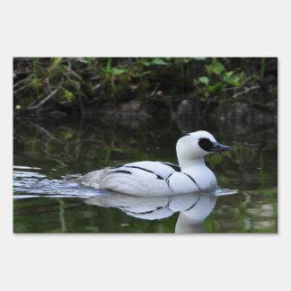 Aves acuáticas blancos y negros del pato de salto señal