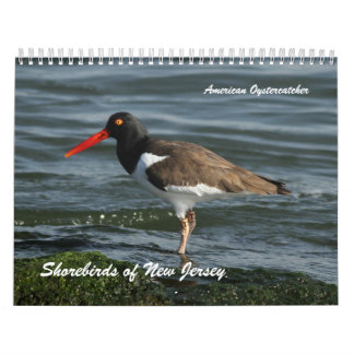 Aves costeras de New Jersey Calendarios De Pared