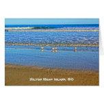 ¡Aves costeras en la resaca! SC de Hilton Head Tarjeta Pequeña