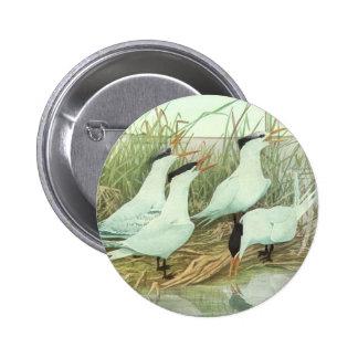 Aves costeras en un pantano, pájaros del vintage pin redondo 5 cm