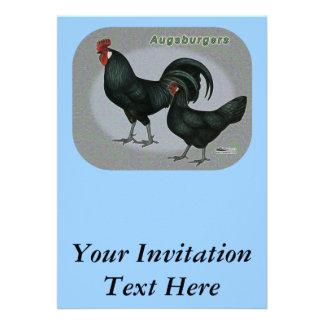 Aves de Augsburger Comunicados Personalizados