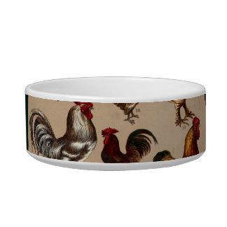 Aves de corral del pollo del mundo tazón para gato