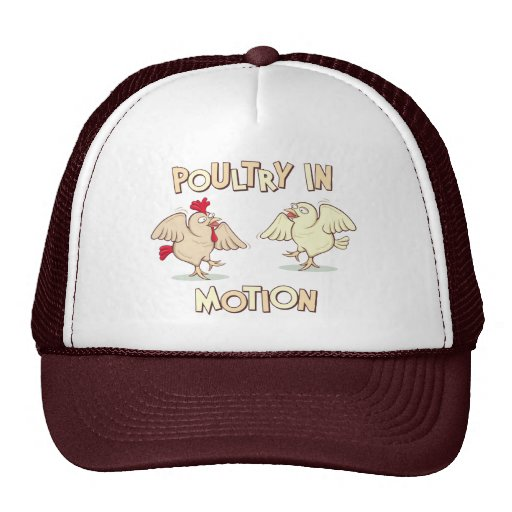 Aves de corral en el movimiento gorras