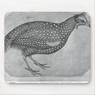 Aves de Guinea, el álbum de Vallardi Mouse Pads