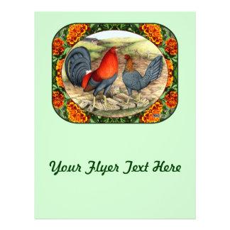 """Aves de juego hermosas folleto 8.5"""" x 11"""""""