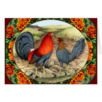 Aves de juego hermosas tarjeta