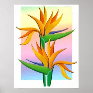 Aves del paraíso con el fondo en colores pastel de posters