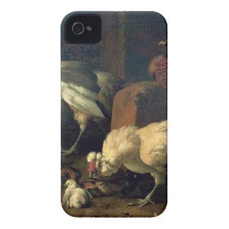 Aves nacionales con un faisán y los pavos reales iPhone 4 cobertura