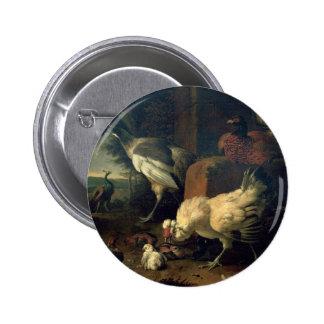 Aves nacionales con un faisán y los pavos reales pin redondo de 2 pulgadas