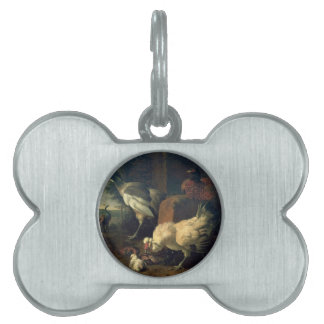 Aves nacionales con un faisán y los pavos reales placa de nombre de mascota