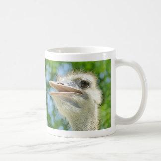 Avestruz africana divertida - taza