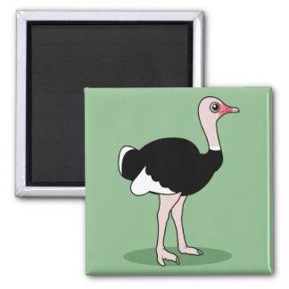 Avestruz del dibujo animado iman de frigorífico