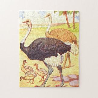 Avestruz del ejemplo del libro de niños del vintag puzzle con fotos