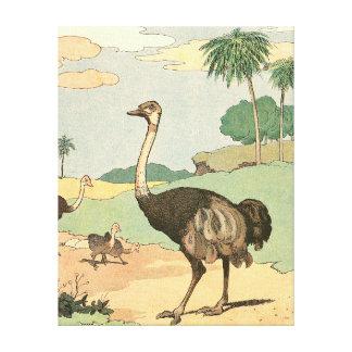 Avestruz en la sabana del desierto impresiones en lienzo estiradas