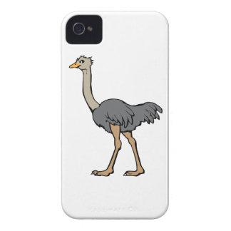 Avestruz iPhone 4 Coberturas
