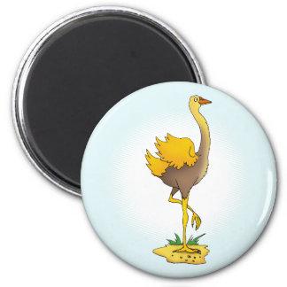 Avestruz linda imán redondo 5 cm
