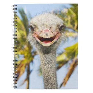 Avestruz sonriente libro de apuntes con espiral
