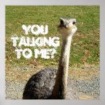 ¿Avestruz usted que habla conmigo? Impresiones