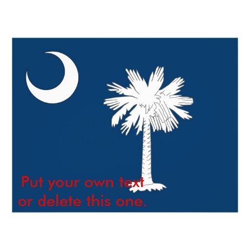 Aviador con la bandera de Carolina del Sur, los E. Tarjetas Informativas