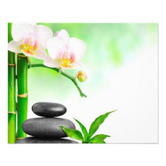 """Aviador del masaje de la belleza de la salud del folleto 4.5"""" x 5.6"""""""