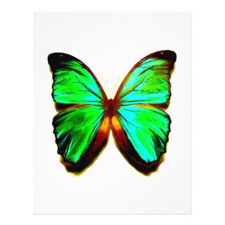 "Aviador verde de la mariposa folleto 8.5"" x 11"""