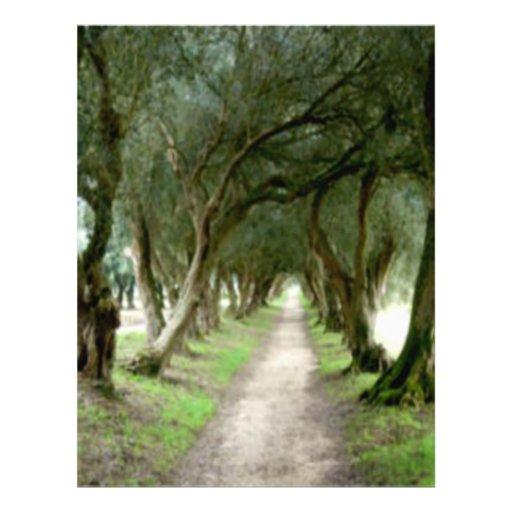 """Aviador verde oliva del jardín folleto 8.5"""" x 11"""""""