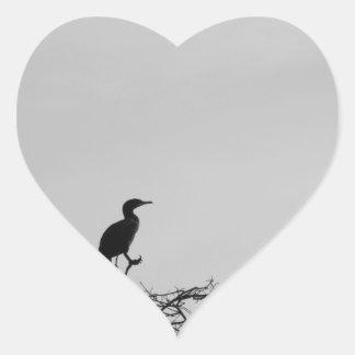 Avian Heart Sticker