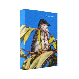 Avian Royalty: Eastern Kingbird Canvas Print