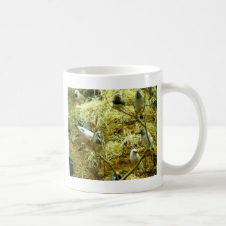 Aviary Enclosure Canaries Up-Close Coffee Mug