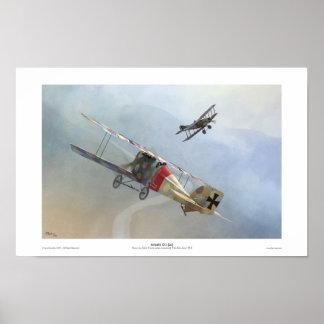 Aviatik D.I Poster