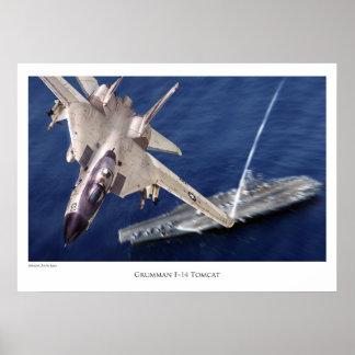 "Aviation Art Poster ""F-14 Tomcat"""
