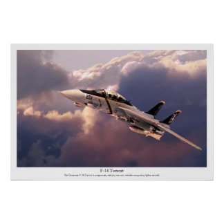 "Aviation Art Poster ""F-14 Tomcat """