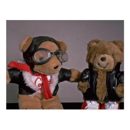 Aviation bears postcard