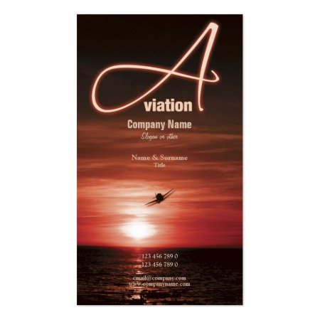 Orange Sky and Shimmering Water Flying at Sunset Aviation Business Cards