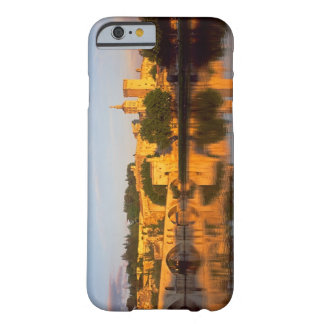 Avignon, Vaucluse, Provence, France, Rhone Barely There iPhone 6 Case
