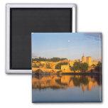Avignon, Vaucluse, Provence, France, Rhone Refrigerator Magnets